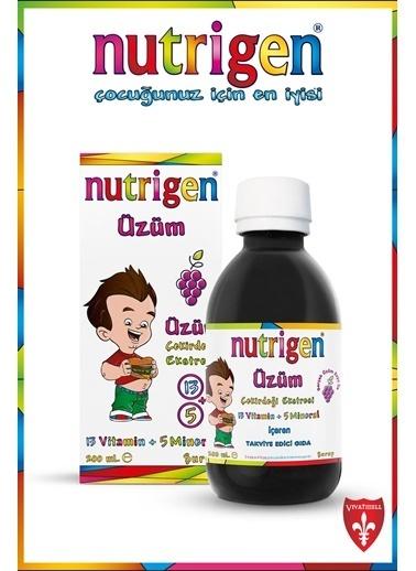 Nutrigen Nutrigen Üzüm Şurup 3'lü Ekonomik Paket 200 Ml Renksiz